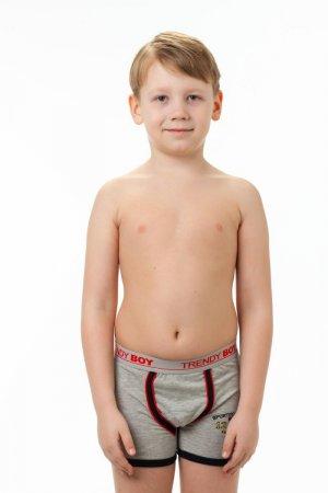 Боксеры Trendi boy 4