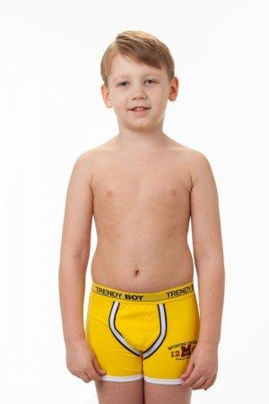 Боксеры Trendi boy 15
